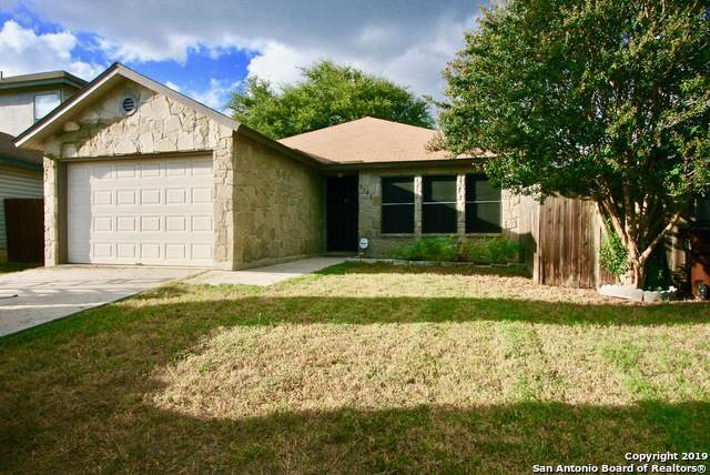 9721 Green Plain Dr, San Antonio, TX 78245 (MLS #1413135) :: The Gradiz Group