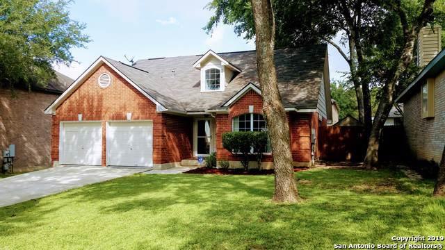 1004 Linden Grove Dr, Schertz, TX 78154 (MLS #1413201) :: Reyes Signature Properties