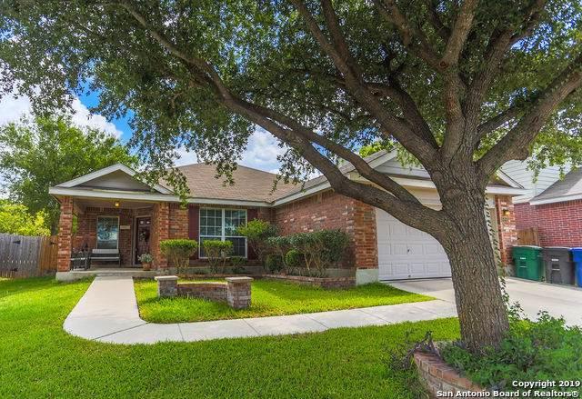 5406 Stormy Skies, San Antonio, TX 78247 (MLS #1413264) :: Carolina Garcia Real Estate Group