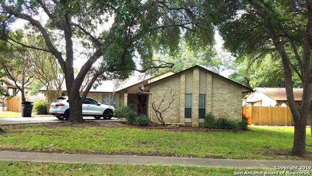 5326 Gary Cooper St, San Antonio, TX 78240 (MLS #1413293) :: The Emery Group