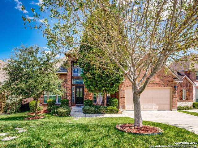 906 Corkwood Trail, San Antonio, TX 78256 (MLS #1413347) :: Santos and Sandberg