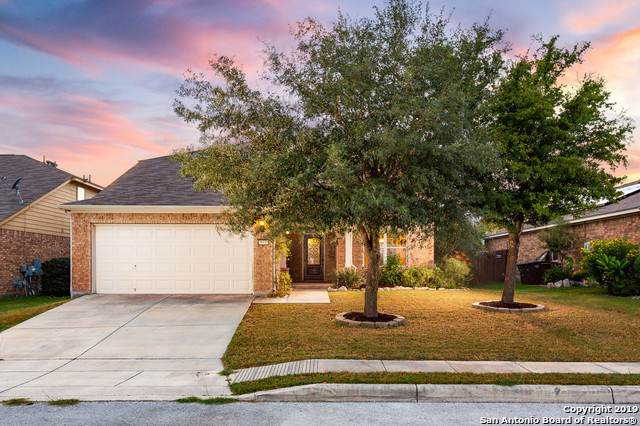21931 Tower Terrace, San Antonio, TX 78259 (MLS #1413485) :: The Castillo Group
