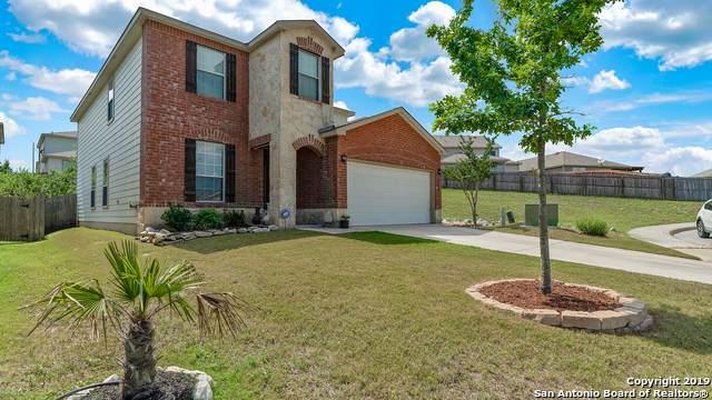 24223 Hazel Alder, San Antonio, TX 78261 (MLS #1413542) :: BHGRE HomeCity