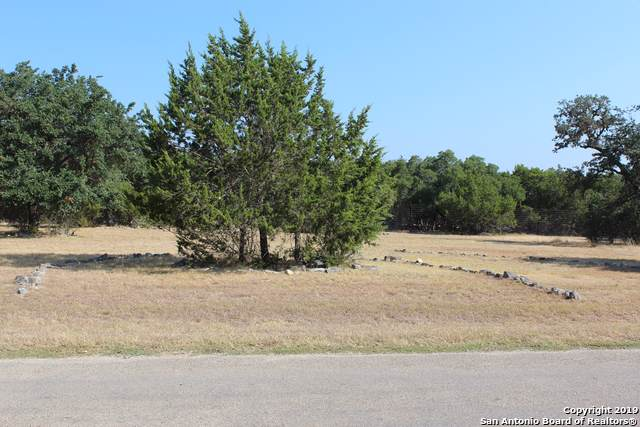 LOT 29 Pr 1501, Bandera, TX 78003 (MLS #1413699) :: Niemeyer & Associates, REALTORS®