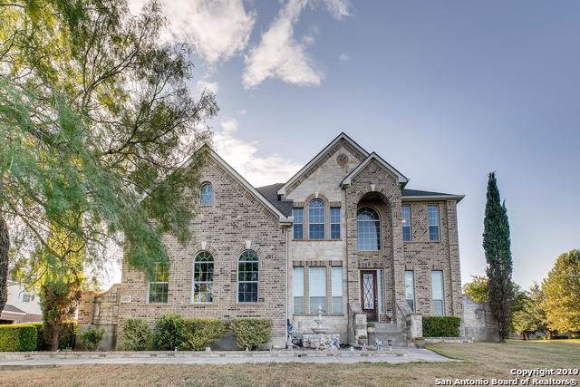 11527 Burnt Umber, Helotes, TX 78023 (MLS #1413717) :: Alexis Weigand Real Estate Group