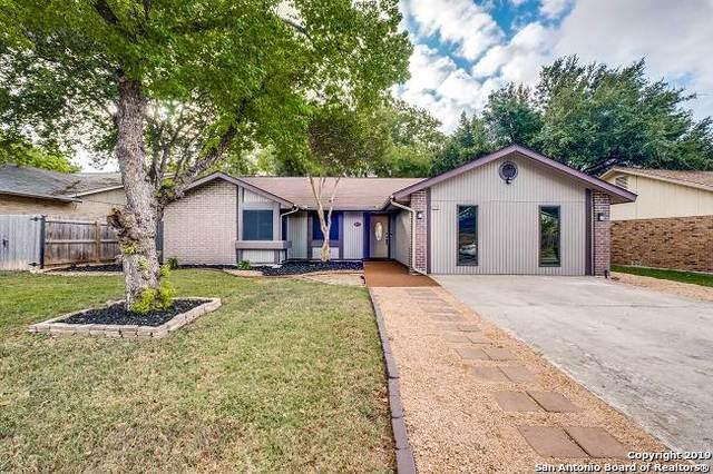 8738 Timber Lodge, San Antonio, TX 78250 (MLS #1414061) :: Neal & Neal Team