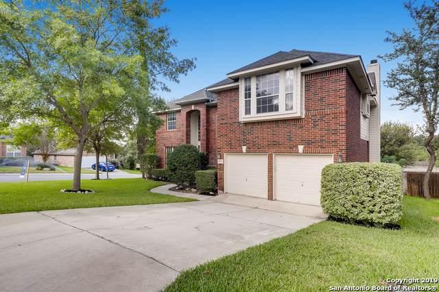 19503 Clay Oak, San Antonio, TX 78258 (MLS #1414203) :: BHGRE HomeCity