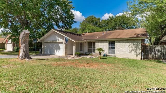 11335 El Sendero St, San Antonio, TX 78233 (MLS #1414313) :: Alexis Weigand Real Estate Group
