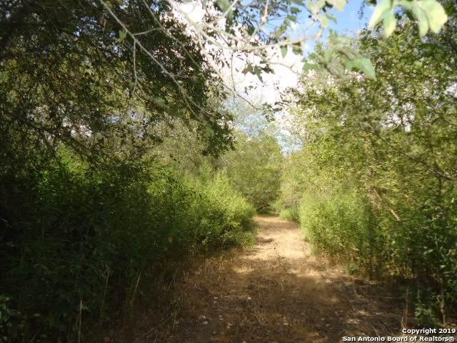 6914 N Us Highway 281, Leming, TX 78064 (MLS #1414511) :: Alexis Weigand Real Estate Group
