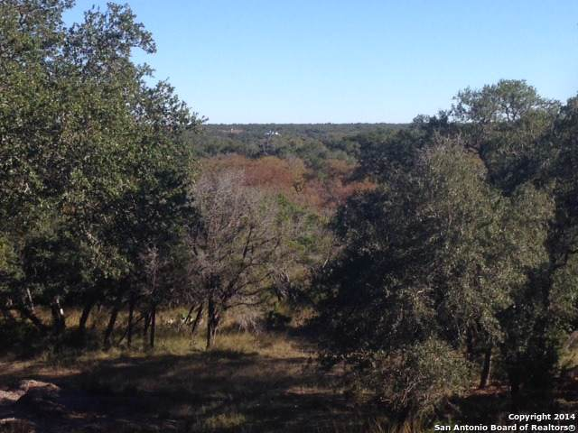 LOT 59 Riverwood, Boerne, TX 78006 (MLS #1414640) :: The Mullen Group | RE/MAX Access