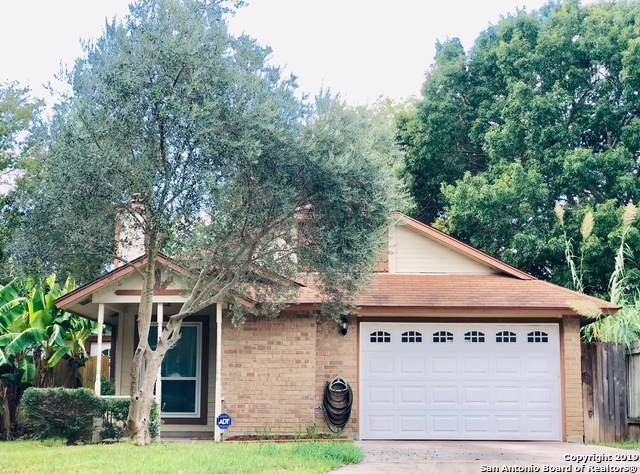 3518 Stoney Meadow St, San Antonio, TX 78247 (#1414646) :: The Perry Henderson Group at Berkshire Hathaway Texas Realty