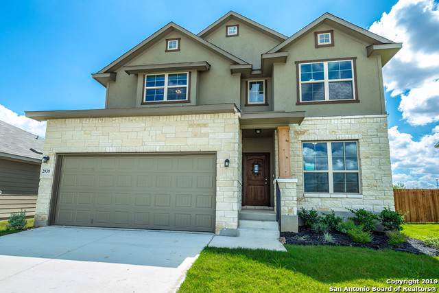 2939 Daisy Meadows, New Braunfels, TX 78130 (MLS #1414667) :: Alexis Weigand Real Estate Group