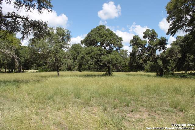 LOT 22 Canyon Forest, Helotes, TX 78023 (MLS #1414725) :: Alexis Weigand Real Estate Group
