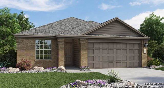 10418 Margarita Loop, Converse, TX 78109 (MLS #1414752) :: Alexis Weigand Real Estate Group