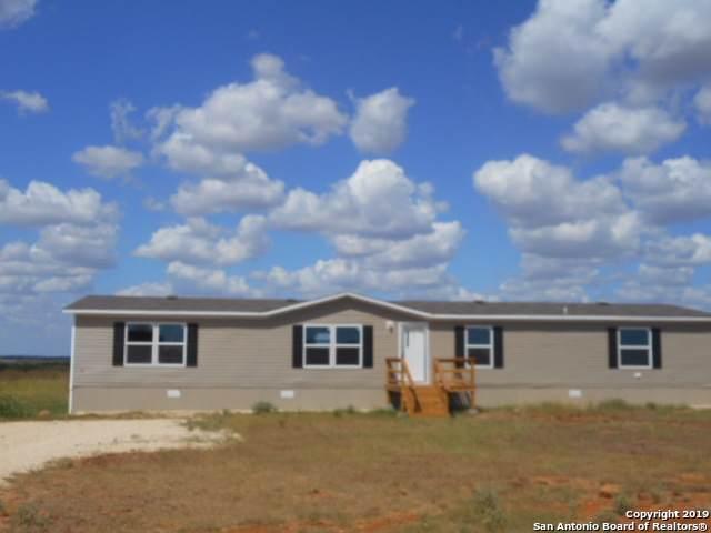 91 Wolfberry Drive, Pleasanton, TX 78064 (MLS #1414803) :: Exquisite Properties, LLC