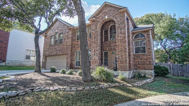 115 Terra Cotta, Universal City, TX 78148 (MLS #1414886) :: BHGRE HomeCity
