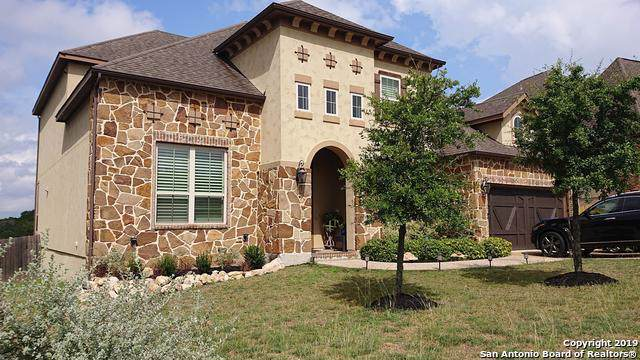 18819 Real Ridge, San Antonio, TX 78256 (MLS #1414906) :: The Gradiz Group
