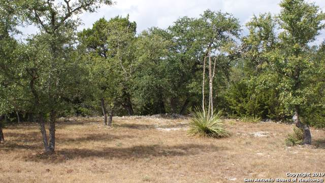 LOT 9 Angelica Vista, Canyon Lake, TX 78133 (#1415096) :: The Perry Henderson Group at Berkshire Hathaway Texas Realty