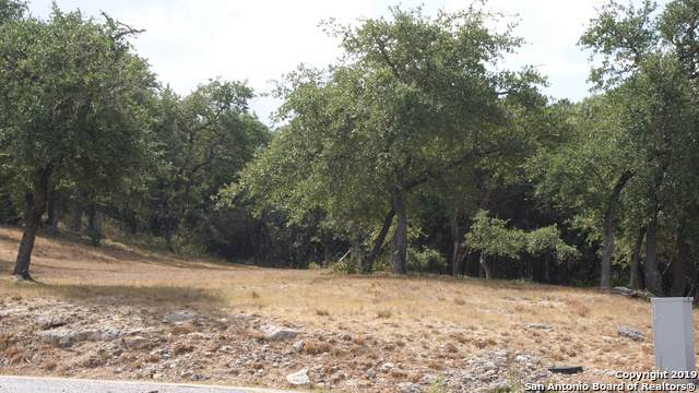 LOT 10 Angelica Vista, Canyon Lake, TX 78133 (#1415114) :: The Perry Henderson Group at Berkshire Hathaway Texas Realty