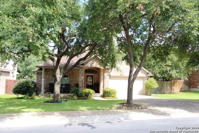 20437 Wild Springs Dr, San Antonio, TX 78258 (MLS #1415388) :: The Castillo Group