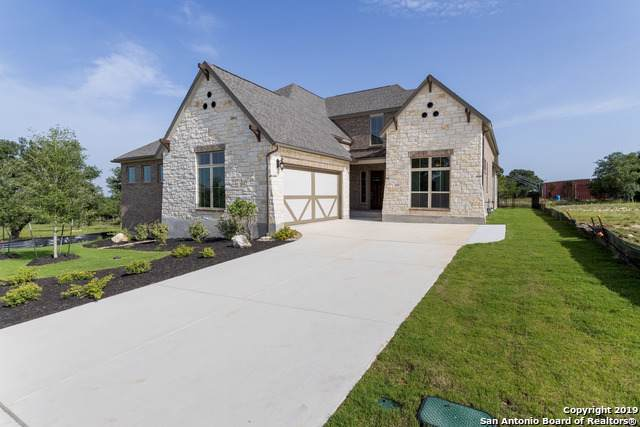 137 Newcourt Pl, Boerne, TX 78006 (#1415413) :: The Perry Henderson Group at Berkshire Hathaway Texas Realty