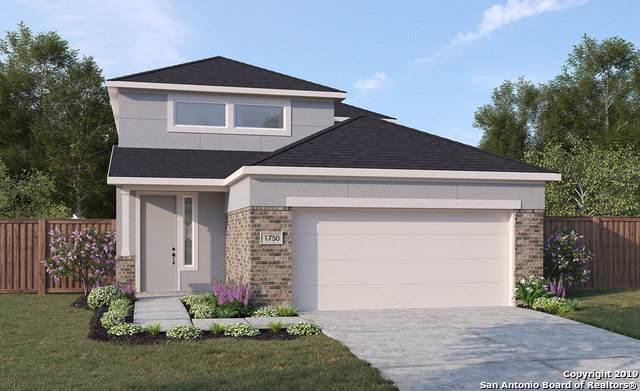 5122 Wells Park, Marion, TX 78124 (MLS #1415447) :: BHGRE HomeCity