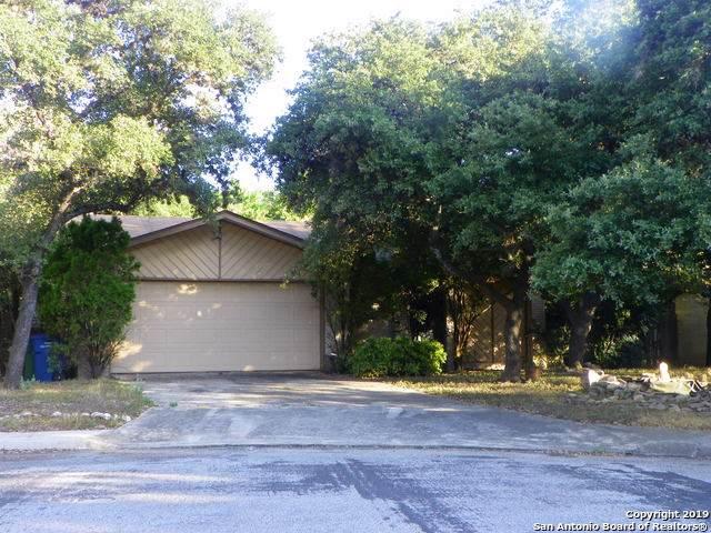 13918 Marble Tree St, San Antonio, TX 78247 (MLS #1415463) :: BHGRE HomeCity