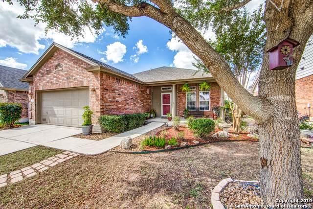 224 Grooms Rd, Cibolo, TX 78108 (MLS #1415565) :: BHGRE HomeCity