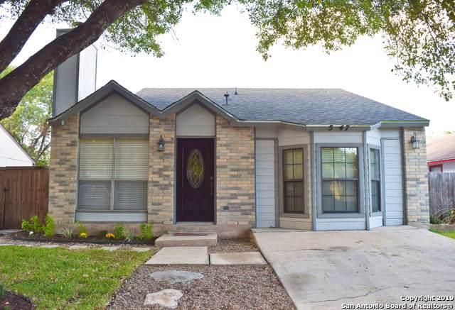 5747 Ascham Dr, San Antonio, TX 78228 (MLS #1415827) :: BHGRE HomeCity