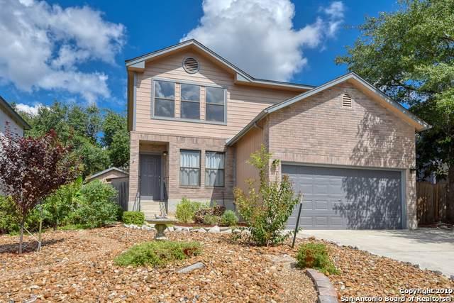 7717 Wood Bluff, San Antonio, TX 78240 (MLS #1415877) :: Alexis Weigand Real Estate Group