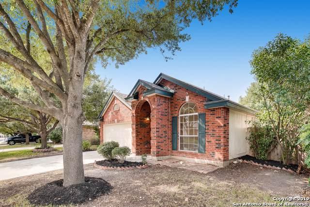 7267 Burns Crossing, San Antonio, TX 78250 (MLS #1415974) :: BHGRE HomeCity