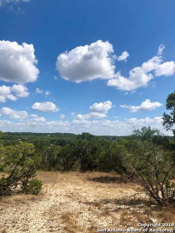 2650 Golf Dr, Spring Branch, TX 78070 (MLS #1416141) :: Alexis Weigand Real Estate Group