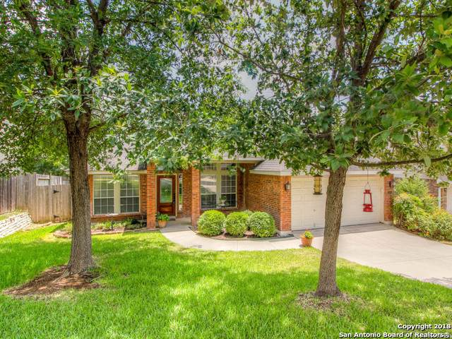 1106 Crystal Spring, San Antonio, TX 78258 (MLS #1416184) :: Alexis Weigand Real Estate Group