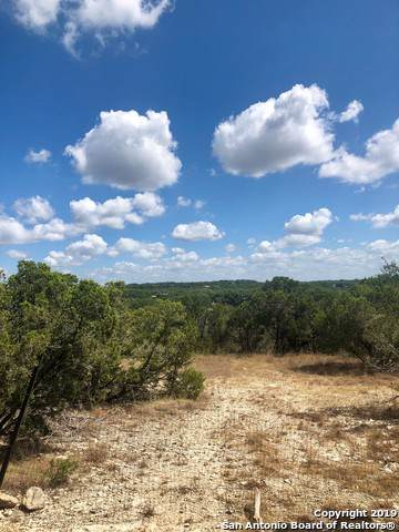 2660 Golf Dr, Spring Branch, TX 78070 (MLS #1416216) :: Alexis Weigand Real Estate Group