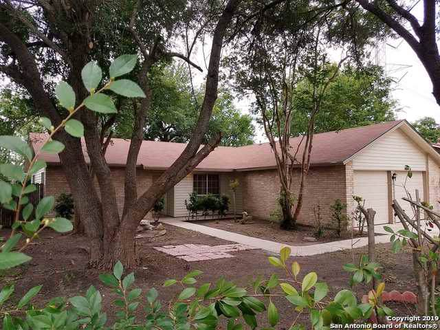5030 Hacienda Dr, San Antonio, TX 78233 (MLS #1416255) :: Alexis Weigand Real Estate Group