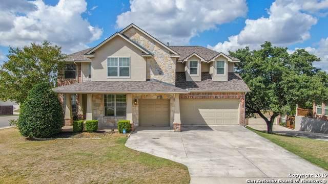 21503 Beaver Brook, San Antonio, TX 78260 (MLS #1416262) :: Alexis Weigand Real Estate Group
