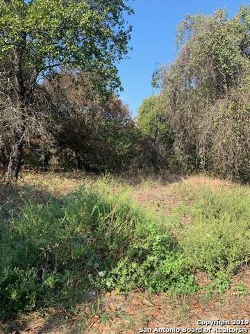 LOT 16 Crystal Water, Elmendorf, TX 78112 (MLS #1416297) :: Alexis Weigand Real Estate Group