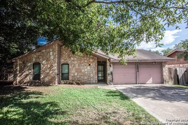 14038 Floral Ridge Dr, San Antonio, TX 78247 (MLS #1416333) :: Alexis Weigand Real Estate Group