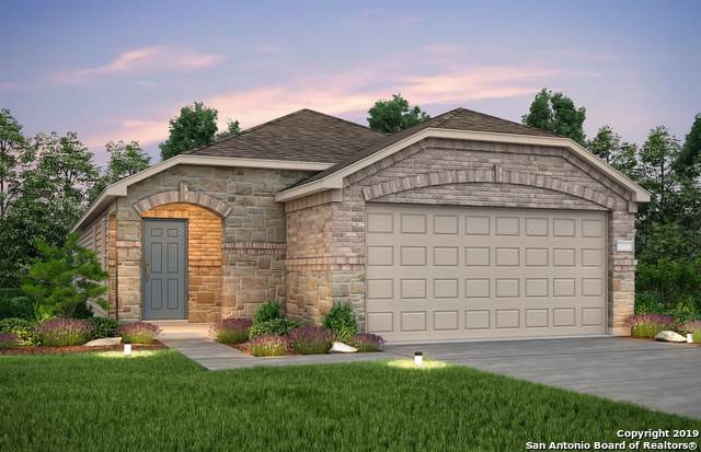 229 Texas Thistle, New Braunfels, TX 78130 (MLS #1416373) :: BHGRE HomeCity