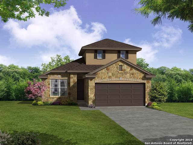 11606 Tribute Pass, San Antonio, TX 78254 (#1416424) :: The Perry Henderson Group at Berkshire Hathaway Texas Realty