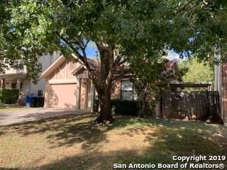 15502 Cross Vine, San Antonio, TX 78247 (MLS #1416459) :: The Gradiz Group