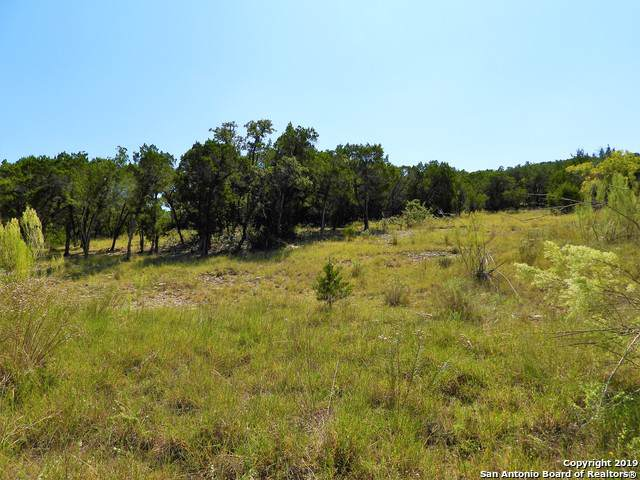 LOT 287 Pr 1709, Mico, TX 78056 (#1416691) :: The Perry Henderson Group at Berkshire Hathaway Texas Realty