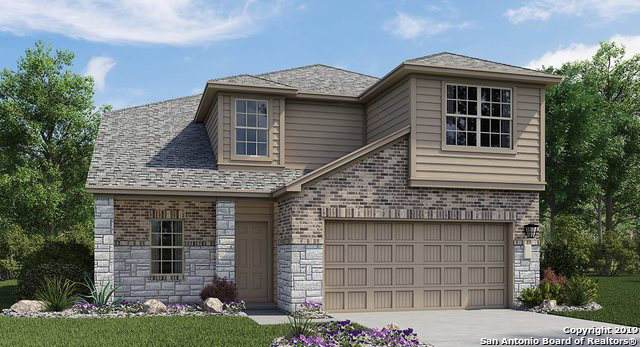 206 Holland Park, Cibolo, TX 78108 (#1416763) :: The Perry Henderson Group at Berkshire Hathaway Texas Realty