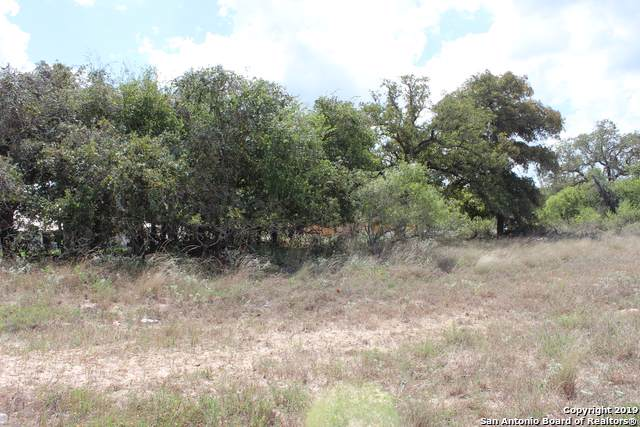 388 Abrego Lake Dr, Floresville, TX 78114 (MLS #1416781) :: The Castillo Group