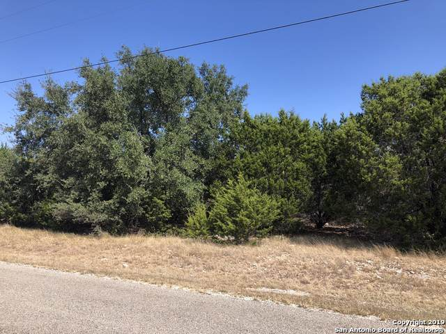 101 Wind Ridge Dr, Boerne, TX 78006 (MLS #1416997) :: Alexis Weigand Real Estate Group