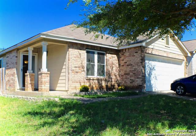 6115 Brandys Farm, San Antonio, TX 78244 (MLS #1417058) :: The Gradiz Group