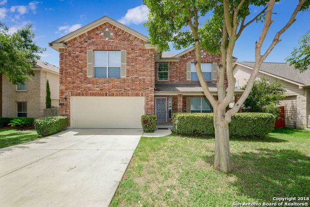 10938 Mustang Spring, San Antonio, TX 78254 (MLS #1417152) :: Alexis Weigand Real Estate Group