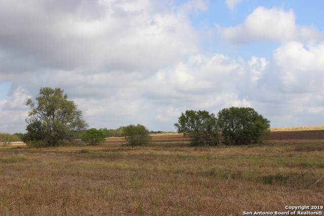 30 ACRE County Road 101, Pleasanton, TX 78064 (MLS #1417255) :: Vivid Realty