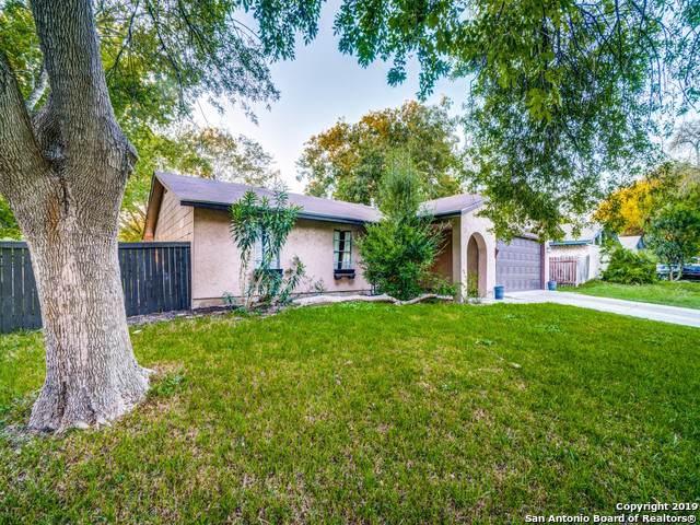 8103 Cedar Forest, San Antonio, TX 78239 (MLS #1417488) :: Laura Yznaga | Hometeam of America
