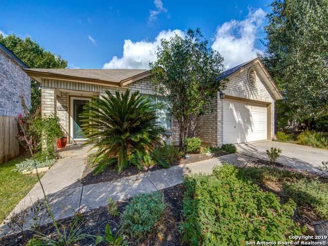 4971 Watering Trail Dr, San Antonio, TX 78247 (MLS #1417553) :: Reyes Signature Properties